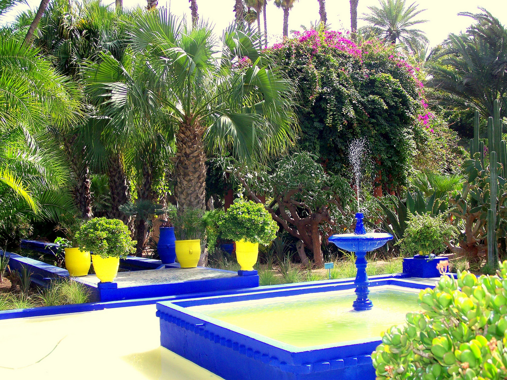 Garden design ideas from jardin majorelle yves saint for Jardin yves saint laurent marrakech